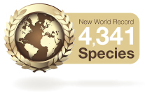 New World Record 4341 Species