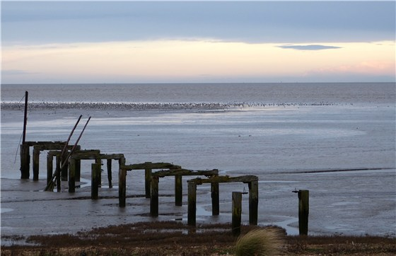 Snettisham dawn 2