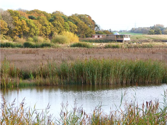 Burton Mere Wetlands Reception hide