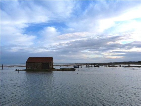 Thornham harbour high tide 1