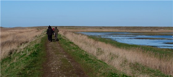 Cley East Bank