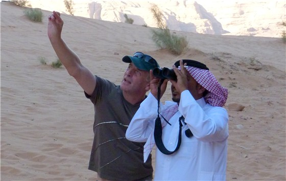 Wadi Rum desert showing birds