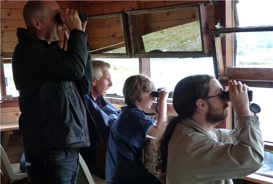 Birdwatching from the hide