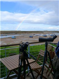 Balcony birding and rainbow