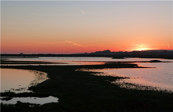 Titchwell RSPB Reserve at dawn