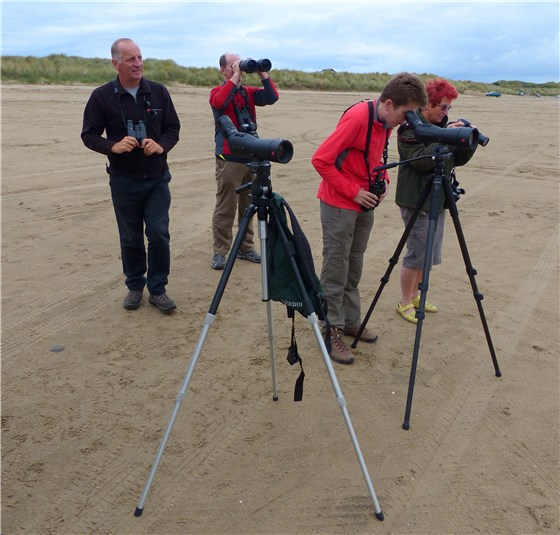 Birders at Ynyslas