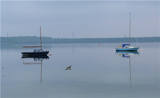 Calm at Grafham Water